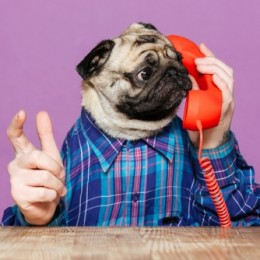 Your Definitive Guide to Nailing a Graduate Phone Interview
